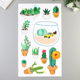 "Наклейки Divino ""Яркие кактусы"" 30х50 см"