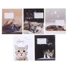 Тетрадь 12 листов в клетку «Удивительные котята», обложка мелованная бумага, ВД-лак, МИКС