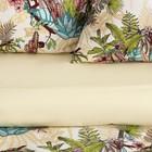 Постельное бельё Этель 1.5 сп «Тропический лес» 143х215 см, 150х214 см, 70х70 см-2 шт - Фото 2
