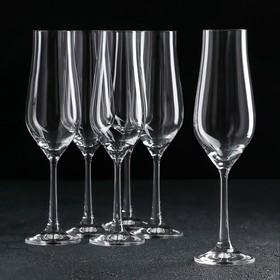 Набор бокалов для шампанского «Тулипа», 170 мл, 6 шт