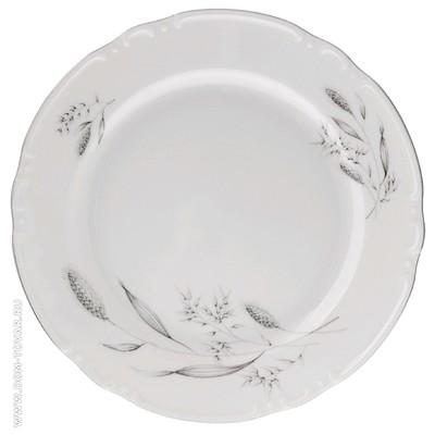 Тарелка мелкая Constance, декор «Серебряные колосья, отводка платина», 21 см - Фото 1