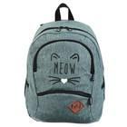 Рюкзак молодёжный, Stavia, 40 х 30 х 13 см, эргономичная спинка, Meow, джинс