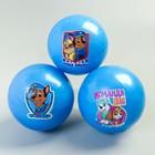 Мяч детский Paw Patrol, синий 16 см, 50 гр МИКС