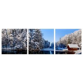 Модульная картина 'Избушка в зимнем лесу' (3-35х35) 35х105 см Ош