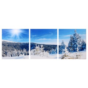 Модульная картина 'Снежный склон' (3-35х35) 35х105 см Ош