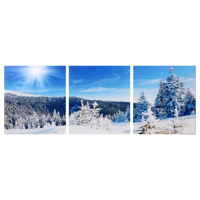 Модульная картина Снежный склон 3-35х35 35х105 см