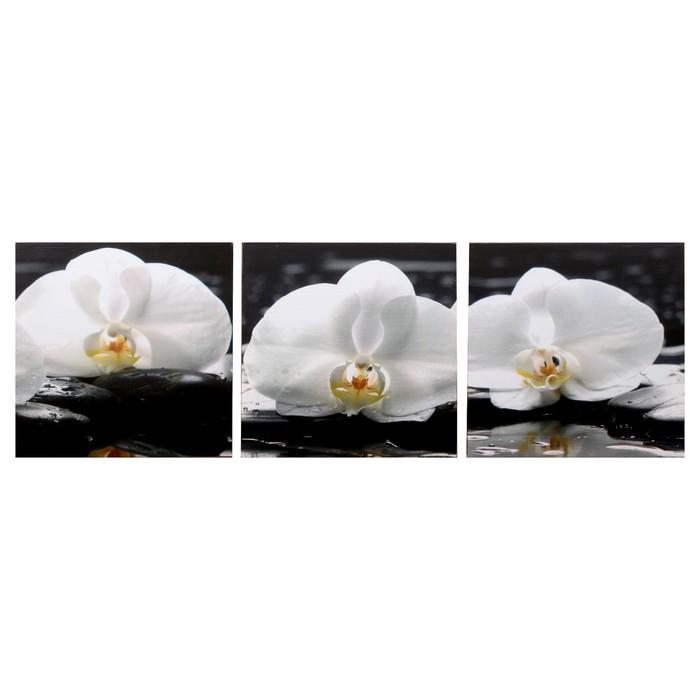 Модульная картина Три орхидеи 3-35х35 35х105 см