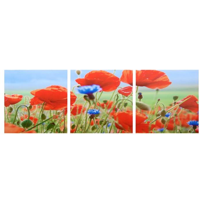 Модульная картина Полевые цветы 3-35х35 35х105 см