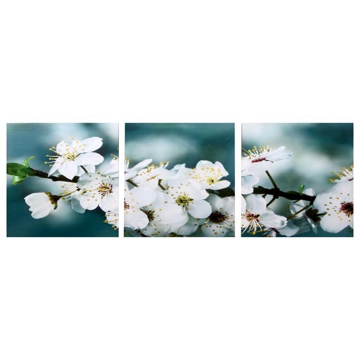 Модульная картина Яблоня 3-35х35 35х105 см