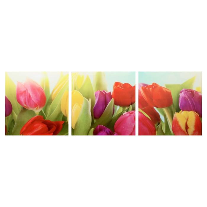 Модульная картина Тюльпаны 3-35х35 35х105 см