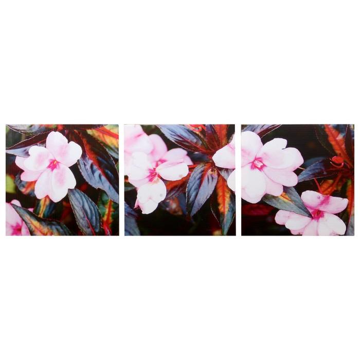 Модульная картина Розовый цвет 3-35х35 35х105 см