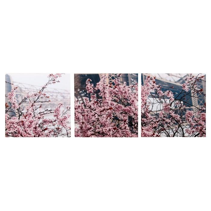 Модульная картина Весенний Париж 3-35х35 35х105 см