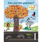 «Как растёт дерево?», 16 стр.