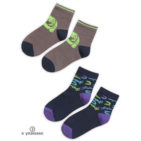 Носки для мальчиков, размер 18-20 см, цвет фиолетовый, синий, 2 пары