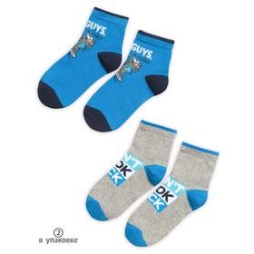 Носки для мальчиков, размер 12-14 см, цвет серый, синий, 2 пары
