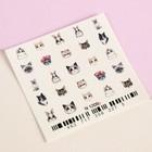 Слайдер-дизайн для ногтей «Кошечки», разноцветный