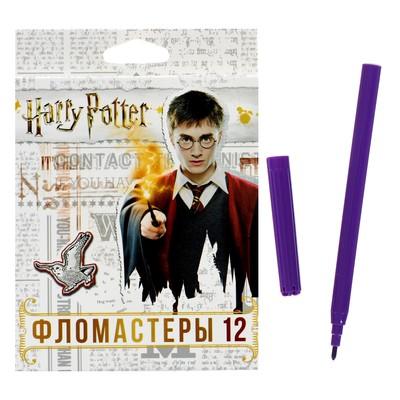 Фломастеры 12 цветов «Гарри Поттер», картонная коробка, европодвес - Фото 1