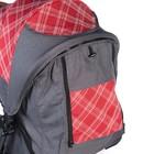 Прогулочная коляска с перекидной ручкой Sense Plus, цвет серый с красным - Фото 10