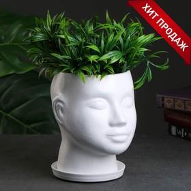 Фигурное кашпо 'Голова' 24х19см белое Ош