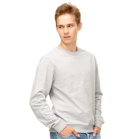 Толстовка унисекс, размер 46, цвет серый меланж Ош