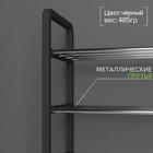 Полка для обуви Доляна, 4 яруса, 42×19×60 см, цвет чёрный - Фото 2