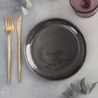 Тарелка плоская «Сталь», d=19 см - Фото 2