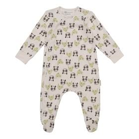 Комбинезон для мальчика «Панды» рост 68 см, цвет молочный