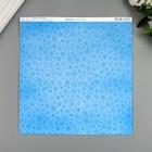 """Бумага для скрапбукинга BoBunny """"Nature"""" 30.5х30.5 см, 190 гр/м2 - Фото 2"""