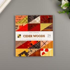 """Набор бумаги для скрапбукинга DCWV, коллекция """"Cider Woods"""" 15 х15см, 36 листов"""