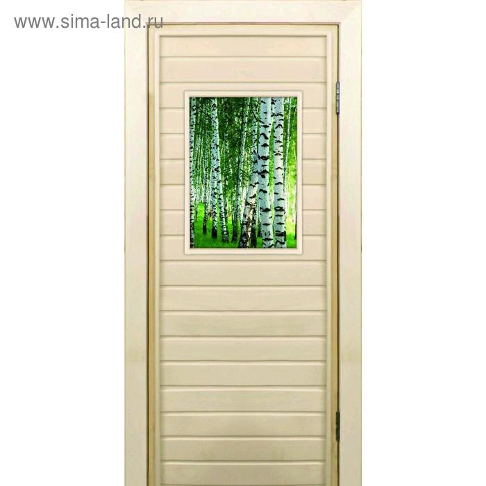 """Дверь для бани со стеклом (40*60), """"Березки"""", 190×70см, коробка из осины"""
