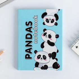 Блокнот Pandas notebook, 64 листа
