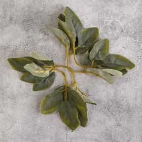 Лист розы 18х8,5 см