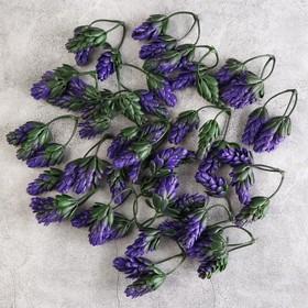 Декоративный хмель 6,5 см, фиолетовый