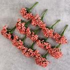Букетик декоративных цветов 2см, нежно- розовый