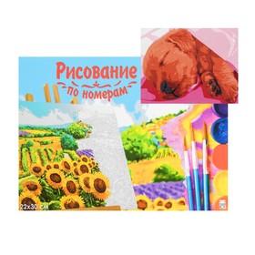 Картина по номерам на холсте 22 × 30 см, «Спящий щеночек»
