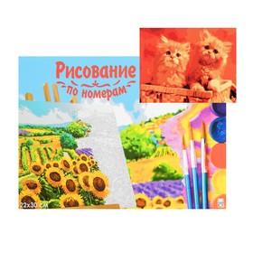Картина по номерам на холсте 22 × 30 см, «Рыжие котята»