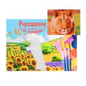 Картина по номерам на холсте 22 × 30 см, «Лев»