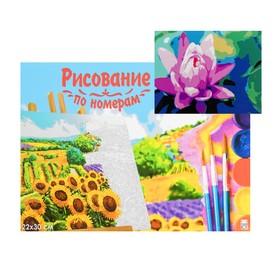 Картина по номерам на холсте 22 × 30 см «Нежный лотос»