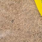 """Газонная травосмесь  """"Спортивная""""   0.8 кг (10шт/уп) Зеленый уголок - Фото 3"""