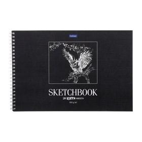 Альбом для рисования А4, 20 листов на гребне SketchBook «Сова», жёсткая подложка, блок чёрная бумага, 160 г/м2