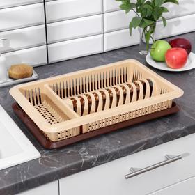 Сушилка для посуды с поддоном «Лилия», 48×30,5×8,5 см, цвет МИКС