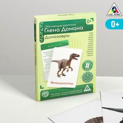 Обучающие карточки по методике Глена Домана «Динозавры», 12 карт, А6, в коробке - Фото 1