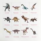 Обучающие карточки по методике Глена Домана «Динозавры», 12 карт, А6, в коробке - Фото 3