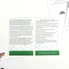 Обучающие карточки по методике Глена Домана «Динозавры», 12 карт, А6, в коробке - Фото 5