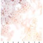 Панель потолочная PANDA Сакура панно 4112 (упаковка 8 шт.), 2х2 м