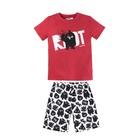 Пижама для мальчиков из футболки и шорт «Angry Birds», рост 98-104 см