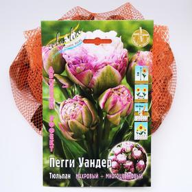 Тюльпан 'Пегги Уандер' 45см, р/р 11/+, сетка 50 шт Ош