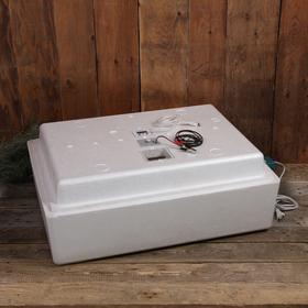 Инкубатор бытовой, на 104 яиц, автоматический переворот, цифровой термометр, 220 В Ош
