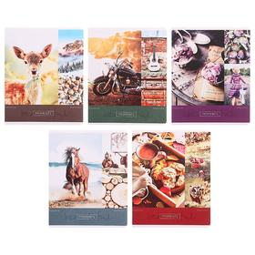 Тетрадь 48 листов в клетку «Стиль. Beautiful moments», обложка мелованный картон, блок офсет, МИКС
