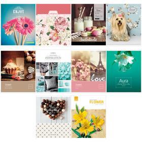 Тетрадь 96 листов в клетку Girl's collection, обложка мелованный картон, блок офсет, МИКС